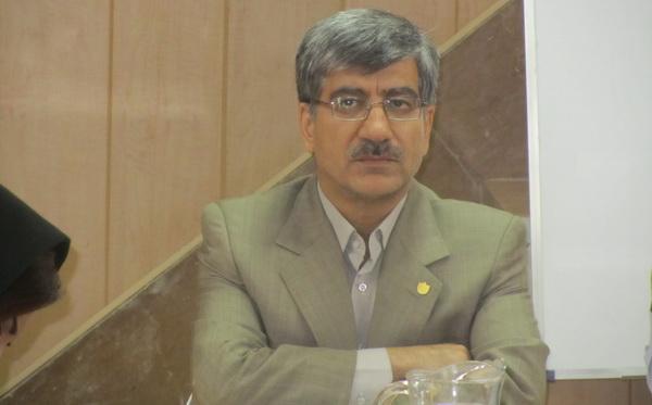 سیدمرتضی میرعظیمی دبیر سازمان نظام صنفی رایانه ای استان اصفهان