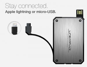 Linear-Flux-LithiumCard-ports-300x230