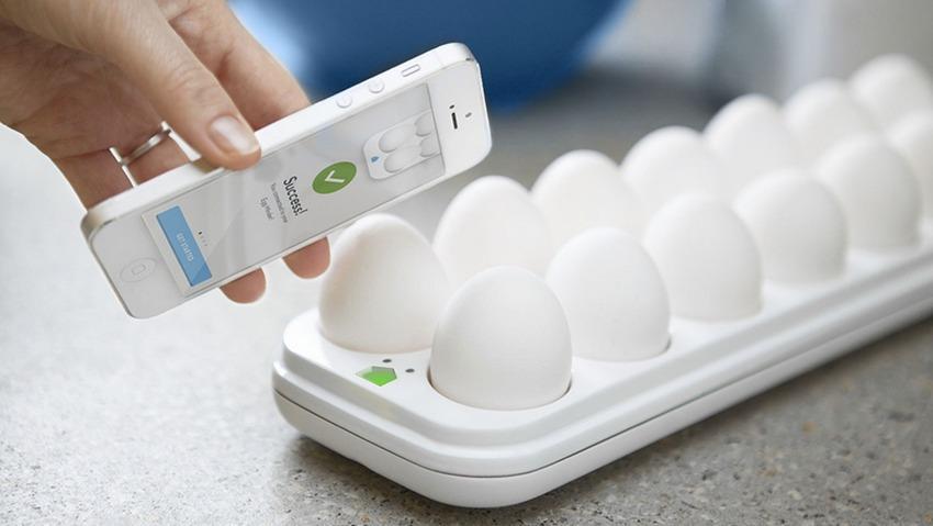 سالم بودن تخم مرغ سنج