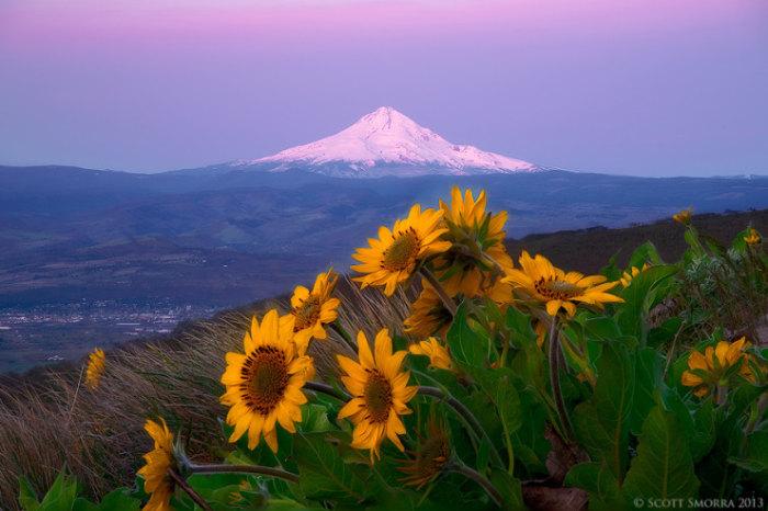 Top-10-Spring-Destinations-Columbia-Photo-by-Scott-Smorra-740x493