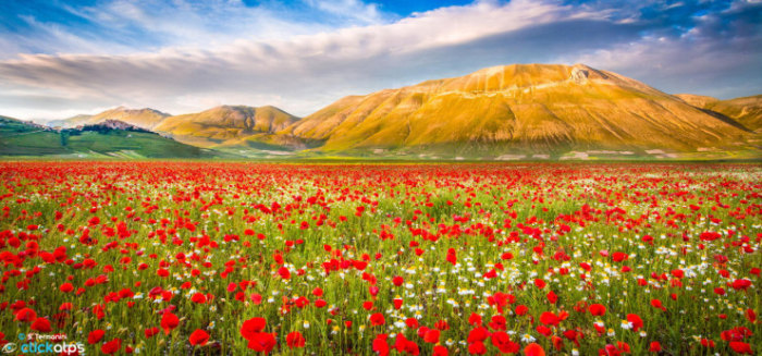 Top-10-Spring-Destinations-Italy-Photo-by-Stefano-Termanini-740x346