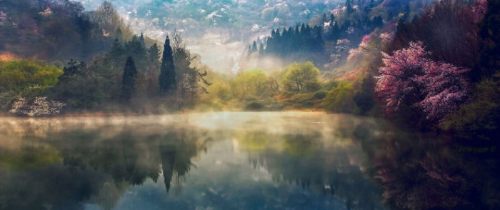Top-10-Spring-Destinations-Korea-Photo-by-Jaewoon-U2-740x311