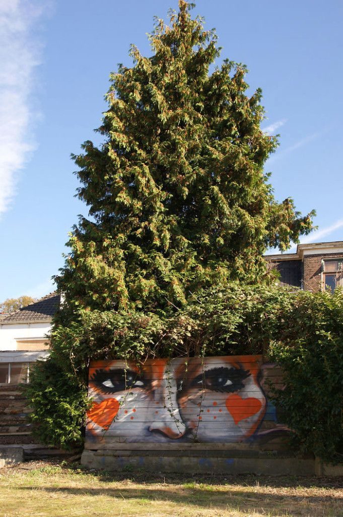 street-art-interacts-with-nature-22